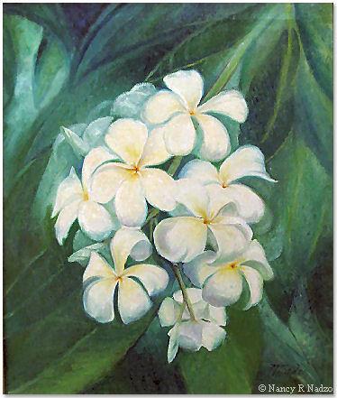 Plumeria flowers by Nancy Nadzo